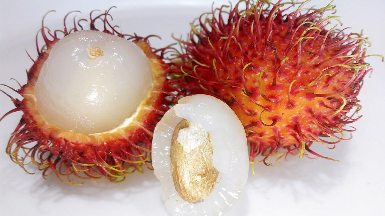 میوه رامبوتان