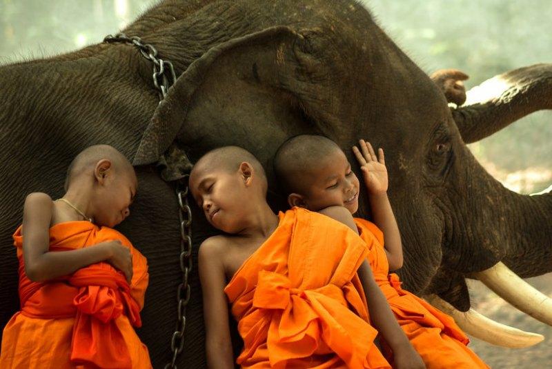 فرهنگ تایلندی