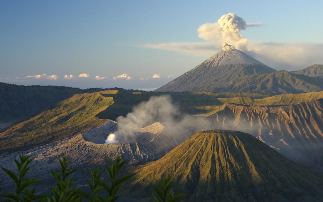 دلایل انتخاب تور بالی