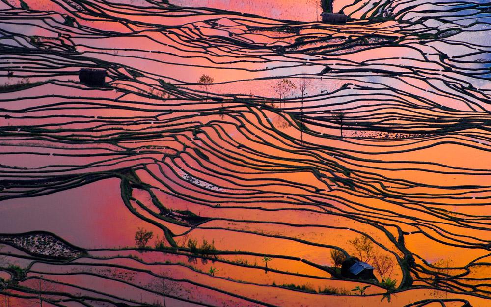 دیدن مناظر شگفت انگیز شالیزارهای پلکانی یوننان در تور چین