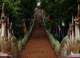 تور تایلند 8 روز (تور بانکوک 4 شب + تور چیانگ مای 3 شب) پاییز و زمستان 96